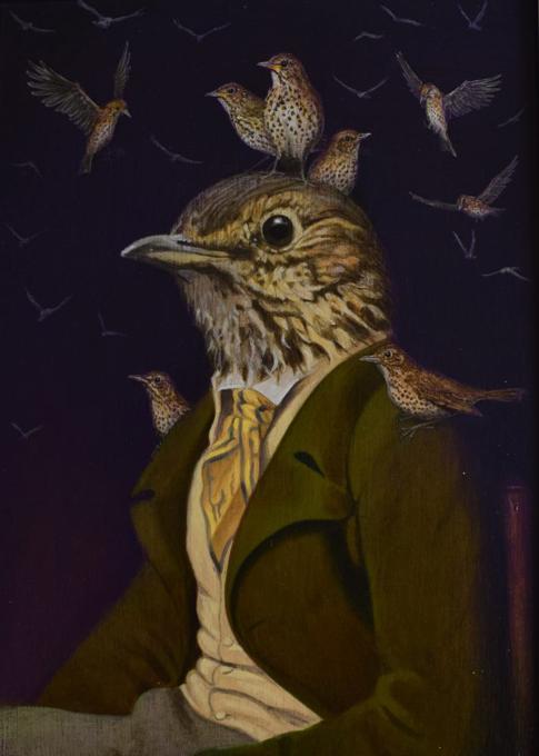 Avian John (Song Trush)